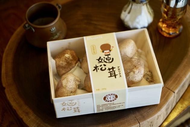 頂級姬松茸-生鮮 3