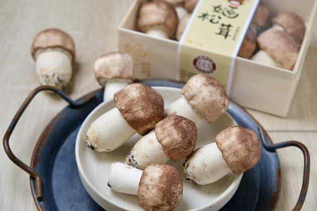 A級 姬松茸-生鮮 4